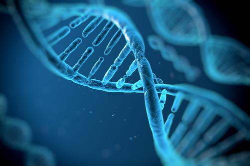 diabete-et-patrimoine-genetique